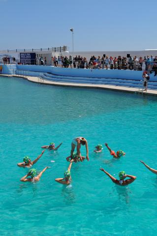 Synchronised swimmers - final dive at Art75