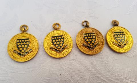 Liz Jilbert Gold County medals - Front