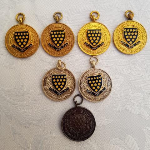 Liz Jilbert selection of county medals